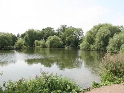 Rochford Reservoir
